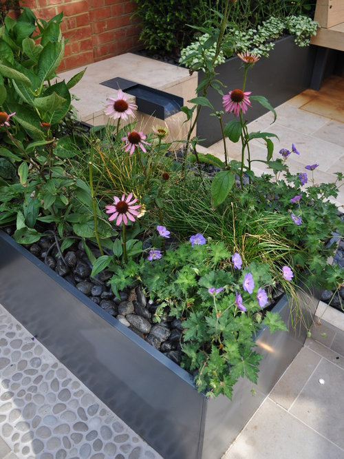 Design Ideas For A Small Contemporary Full Sun Rooftop Stone Formal Garden In London