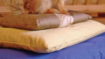 Natural Organic pet beds