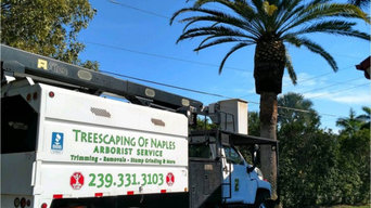 Company Highlight Video by Tree Scaping of Naples
