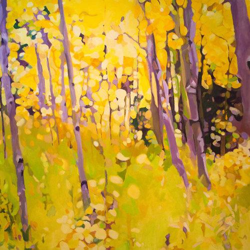 Yellow Aspens - Fine Art Prints