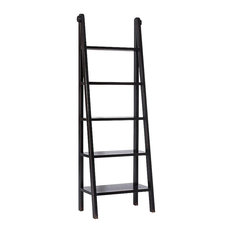 Canton Ladder Bookcase