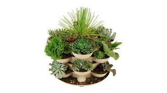 Sand Colored Stack & Grow Planter with Cactus