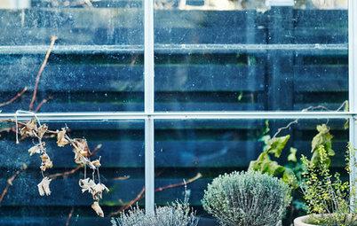 7 tips: Hold udendørsplanterne i live om efteråret og vinteren