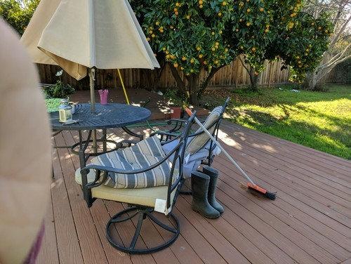 I Need Help To Design My Backyard