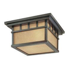 Dolan Designs Barton 2 Light Ceiling Winchester