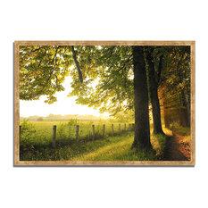 """Fresh Morning Sun"", Framed Photograph Print, Ready To Hang"