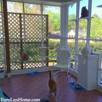 Screened-in Cat Porch or Catio