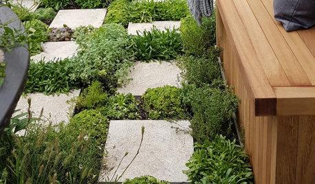 Выставка в Челси 2021: Новые идеи для маленького сада