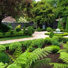 Kingsbury Garden Design Garden