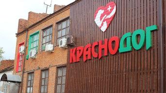 """Реконструкция фасада приюта для пострадавших животных """"Краснодог"""""""