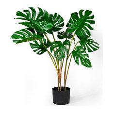 "Tropical Monstera Plant, 35""x17"""