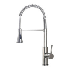 Merritt Contemporary Kitchen Sink Faucet With Pull Down Sprayer
