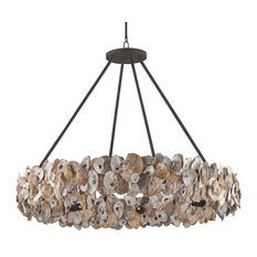 Shell chandeliers houzz oyster shell coastal beach ring chandelier chandeliers mozeypictures Images
