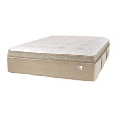 Chattam & Wells - Chattam & Wells Franklin Latex Euro Top Queen Mattress - Mattresses