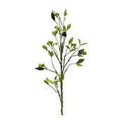"41"" Branch With Seed Clusters, Set Of 2"
