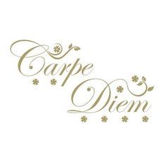 "Carpe Diem Wall Hanger Decal, Gold, 47""x28"""