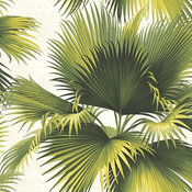 Kenneth James by Brewster PS40114 Palm Springs Endless Summer Green Palm