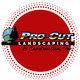 Pro Cut Landscaping & Construction