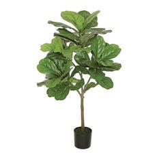 Large Leaf Fig Tree 3' Tall