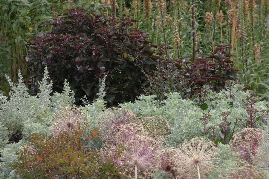 Duftige Pflanzungen