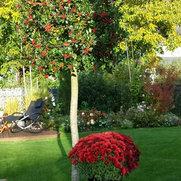 Foto von Garten & Landschaftsbau Arnold