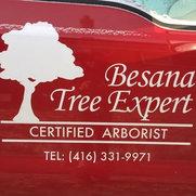Foto de Besana Tree Experts Inc.