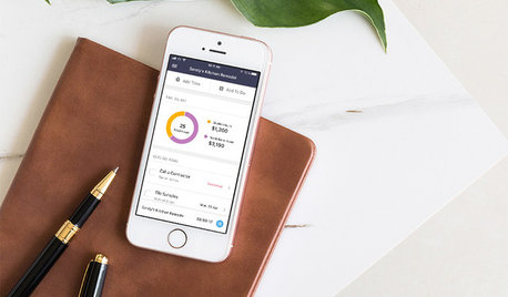 New Ivy App Gives Designers Tracking and Measuring Tools and More