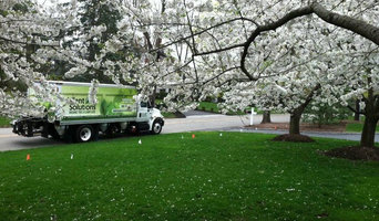Plant Solutions Tree and Lawn service