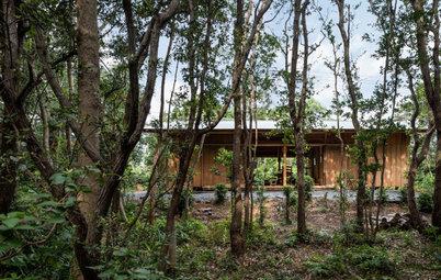 伊勢志摩の木と土と石で建てた、森の中に佇む家