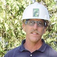 Traverso Tree Services's profile photo