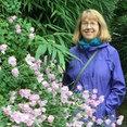Firefly Garden Design, LLC's profile photo