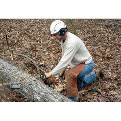 Cleancut Tree Services Manassas Va Us 20110