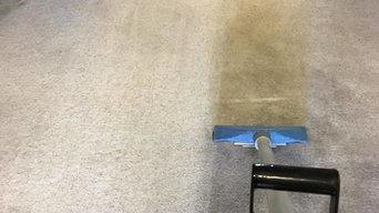 Carpet Stain Removal in Alburqueque, NM