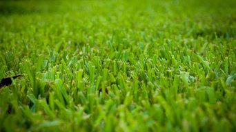 O'Hara's Lucky Lawn Care Program