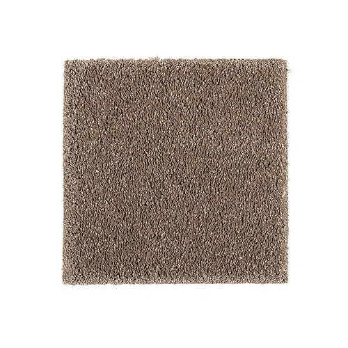 Tremendous Need Help Decorating A Living Room With Brown Carpet Ncnpc Chair Design For Home Ncnpcorg