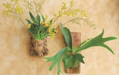 Guest Picks: 20 Uncommonly Attractive Pots and Planters