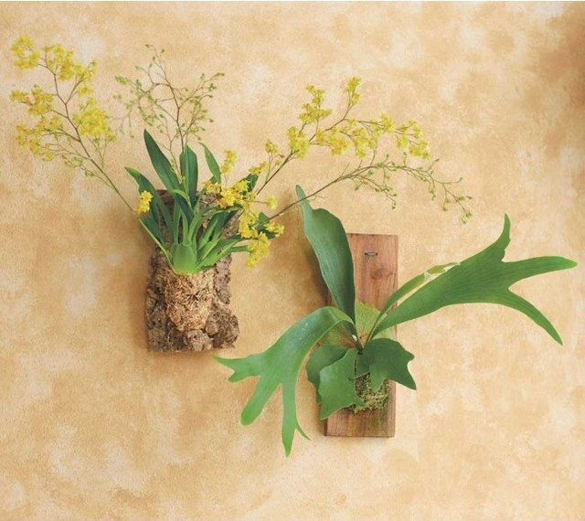 Guest Picks 20 Uncommonly Attractive Pots And Planters