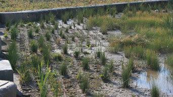 Bomanite Grasscrete Pervious Concrete System using Molded Pulp Formers