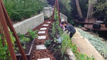 Lindsey's garden