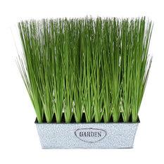 "14"" Wheat Grass in Rectangular Window Box, Set of 2"