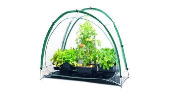 Culti-Cave Mini Greenhouse