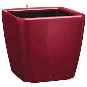 Quadro LS Self Watering Planter, 40x43x43 CM, Red