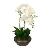 Artificial White Double Stem Orchid in Stone Bowl