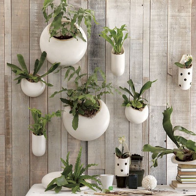 Contemporary Indoor Pots & Planters by West Elm