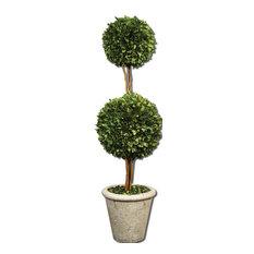 Spheres Topiary Preserved Boxwood Planter