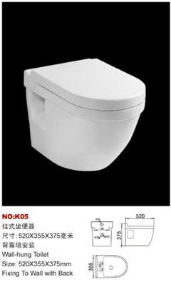 Wall mounted toilet. Yes or no?