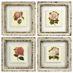 """Imax - Lynette Antique White Flower Artwork Set of 4 Wood Decor Imax - Botanical style floral prints hang suspended in glass with an antiqued cream frame. Material is 85% Fir wood, 10% MDF, 5% Paper. Item measurements 10""""h x 10""""w."""