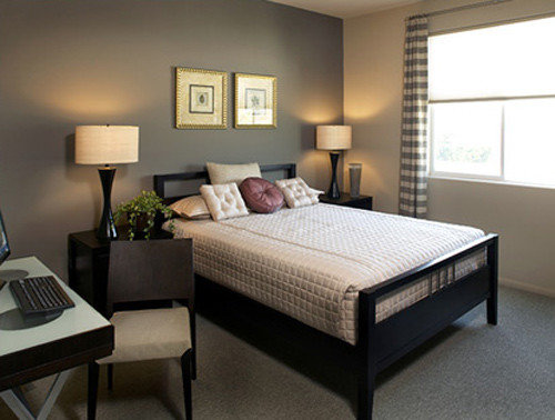 Bedroom Accent Wall Design Ideas Remodel Pictures Houzz