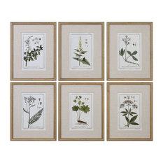 Leaf Berry Flower 6-Piece Wall Art Set, Beaded Gold Frame Botanical