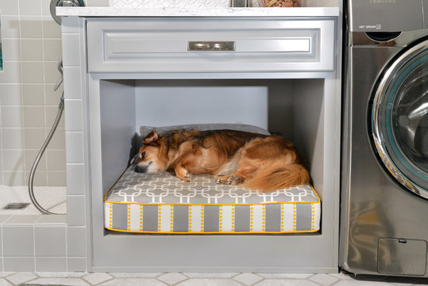 16 Stylish Built In Sleeping Areas For Dogs